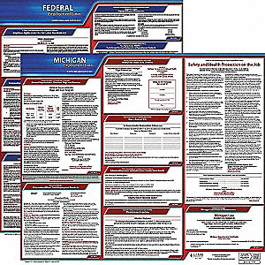 Labor Law Poster Kit, MI Federal and State Labor Law, English, None