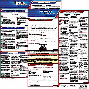 Labor Law Poster Kit,MT,English,19 In. W
