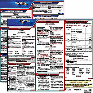 Labor Law Poster Kit, NY Federal and State Labor Law, English, None
