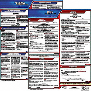 Labor Law Poster, OH Federal and State Labor Law, English, 3 yr.