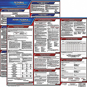 Labor Law Poster, PA Federal and State Labor Law, English, 3 yr.