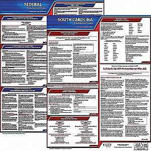 Labor Law Poster, SC Federal and State Labor Law, English, 5 yr.