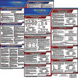Labor Law Poster, WI Federal and State Labor Law, English, 5 yr.