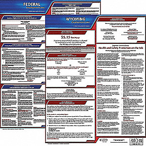 Labor Law Poster, WY Federal and State Labor Law, English, 3 yr.
