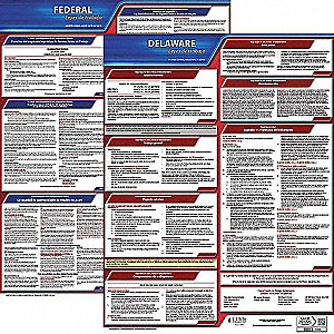 Labor Law Poster Kit, DE Federal and State Labor Law, Spanish, None