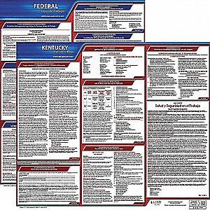 Labor Law Poster, KY Federal and State Labor Law, Spanish, 1 yr.