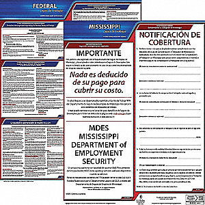 Labor Law Poster,Fed/STA,MS,SP,20inH,1yr