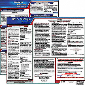 Labor Law Poster,Fed/STA,NC,SP,20inH,3yr
