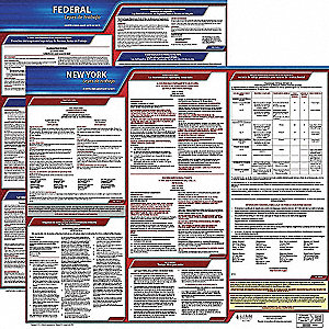Labor Law Poster, NY Federal and State Labor Law, Spanish, 3 yr.