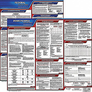 Labor Law Poster Kit, PA Federal and State Labor Law, Spanish, None