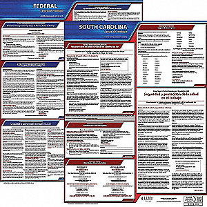 Labor Law Poster,Fed/STA,SC,SP,20inH,3yr