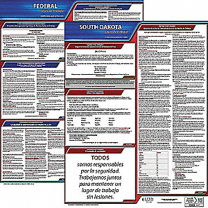 Labor Law Poster, SD Federal and State Labor Law, Spanish, 3 yr.
