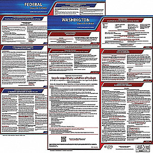 Labor Law Poster Kit, WA Federal and State Labor Law, Spanish, None