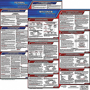 Labor Law Poster Kit,WI,Spanish,19 In. W