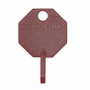 Octagonal, Permanent Blank Key Tag, Red&#x3b; PK100