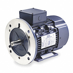 1/3 HP Metric Motor,3-Phase,1135 Nameplate RPM,230/460 Voltage,Frame D80D