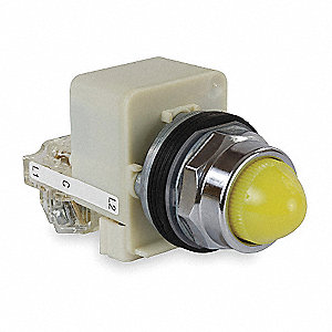 Push to Test Pilot Light Complete, 30mm, 120VAC Voltage, Lamp Type: Incandescent