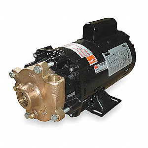 Bronze, Brass 1 HP Centrifugal Pump, 1 Phase, 115/230 Voltage