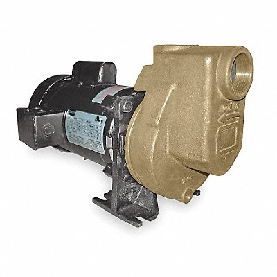2ZXR2 - Centrifugal Pump 1 HP 1 Ph 115/208-230