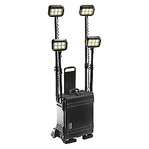 Remote Area Lighting System,110V,Black