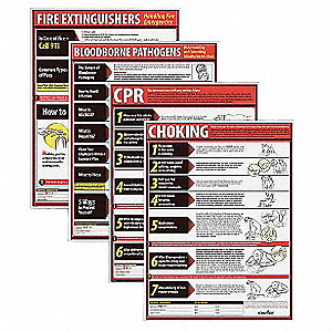 "Poster Kit, English, 18"" x 24"", 1 EA"