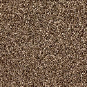 "GRAINGER APPROVED Coffee Carpet Tile, Level Loop, 19-11/16""L X19-11/16""W X 7/64"" H, 20 PK - 31HL69|31HL69 - Grainger"