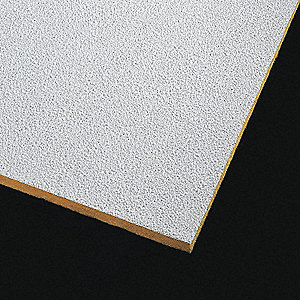 "Ceiling Tile,24"" W,48"" L,1"" Thick,PK10"