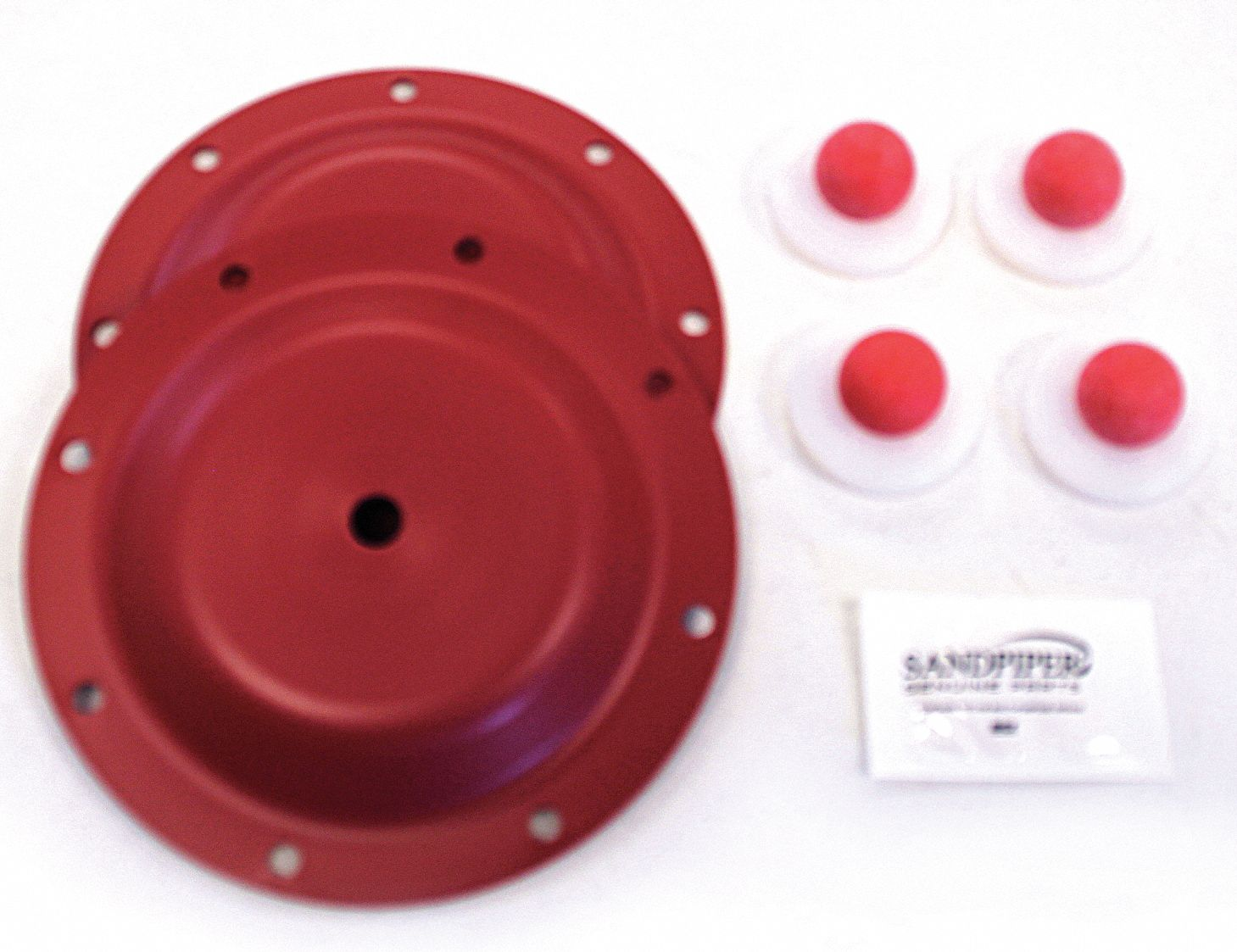 Wet End Repair Kit,  Fits Brand Sandpiper,  For Use With Grainger Item Number 12W425