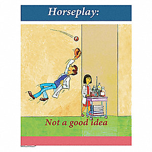 Safety Poster,Horseplay - Not A Good,EN