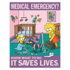 Medical Emergency? Know What to Do, It Saves Lives Posters