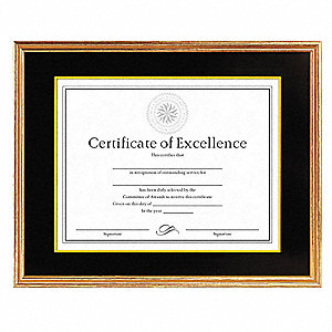 Document/Certificate Frame,14x11 In.