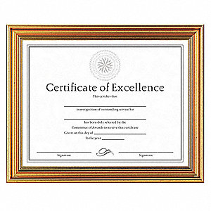 Document Frame,Vintage,8-1/2x11 In.