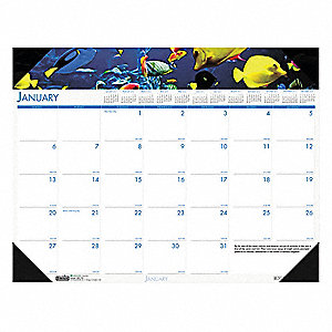 Monthly Desk Calendar,22x17 In,Sea Life