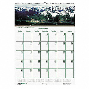 Monthly Wall Calendar,12x16-1/2 In.