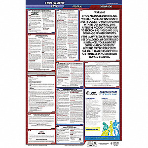 Labor Law Poster, CO Federal and State Labor Law, English, 5 yr.