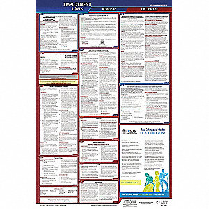 LaborLaw Poster,Fed/STA,DE,ENG,26inH,3yr