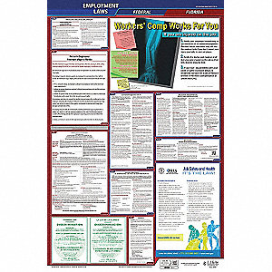 Labor Law Poster, FL Federal and State Labor Law, English, None