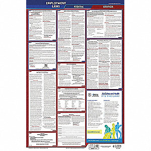 Labor Law Poster, GA Federal and State Labor Law, English, 3 yr.