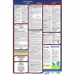 Labor Law Poster, ID Federal and State Labor Law, English, None