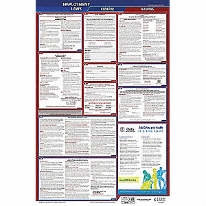 Labor Law Poster, IL Federal and State Labor Law, English, 3 yr.