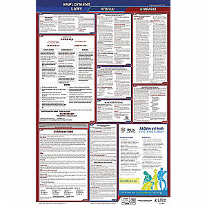 Labor Law Poster, NE Federal and State Labor Law, English, 3 yr.