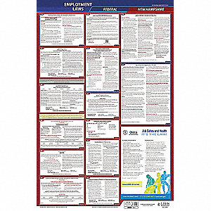 Labor Law Poster, NH Federal and State Labor Law, English, None