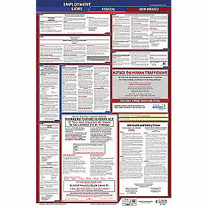Labor Law Poster, NM Federal and State Labor Law, English, 3 yr.