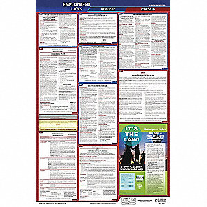 Labor Law Poster, OR Federal and State Labor Law, English, 3 yr.