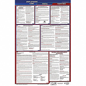 Labor Law Poster, PR Federal and State Labor Law, English, 1 yr.
