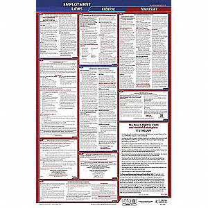 Labor Law Poster, TN Federal and State Labor Law, English, 1 yr.