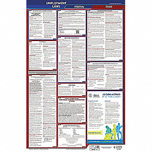 Labor Law Poster, TX Federal and State Labor Law, English, 1 yr.