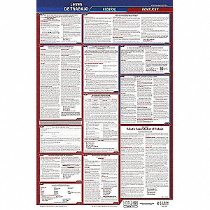 Labor Law Poster,Fed/STA,KY,SP,40Wx26inH