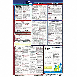 Labor Law Poster,Fed/STA,MT,SP,26inH,5yr