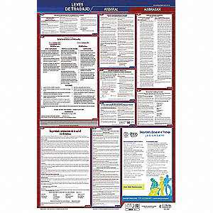Labor Law Poster,Fed/STA,NE,SP,26inH,1yr